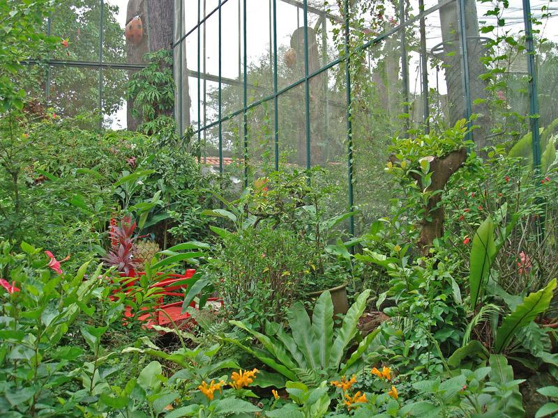 Butterfly Park Enclosure